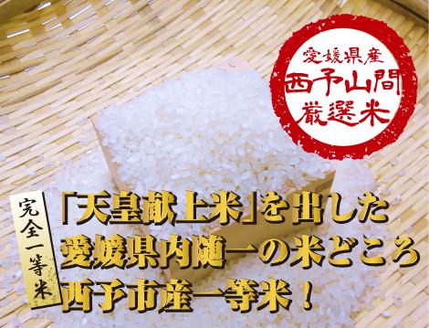 seiyo-r1